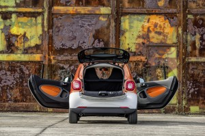 2016 smart fortwo (32)